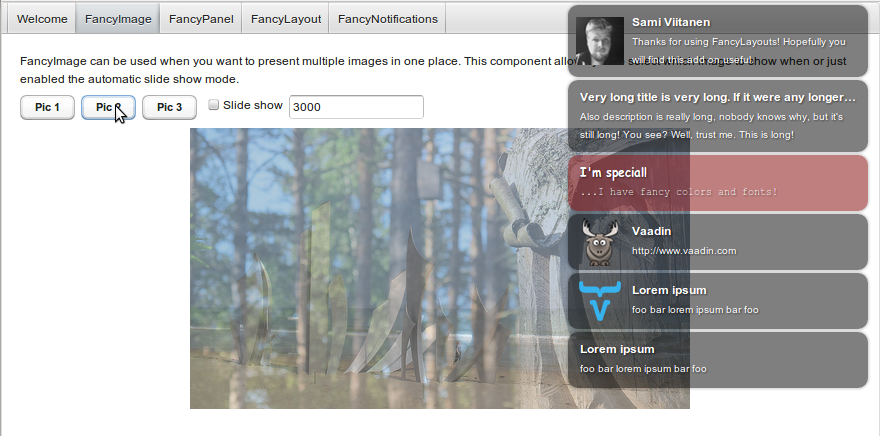 Screenshot of demo application (FancyNotifications and FancyImage)
