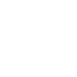 croppie icon