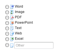 Vertical OptionGroup with icons and a TextField component