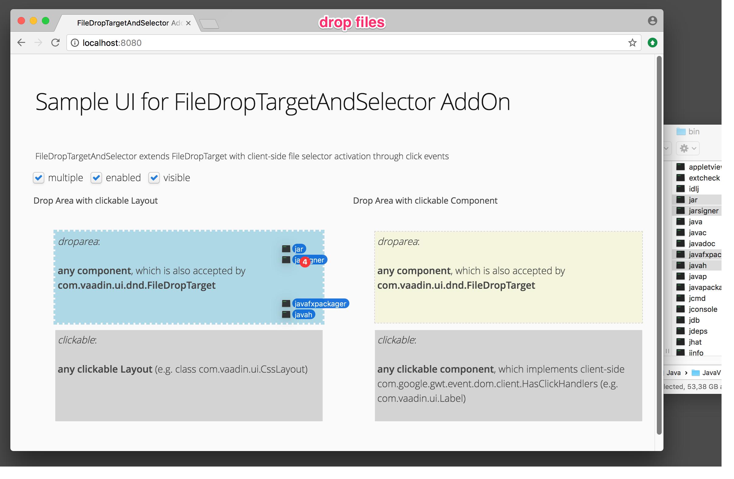 drop file (FileDropTarget)